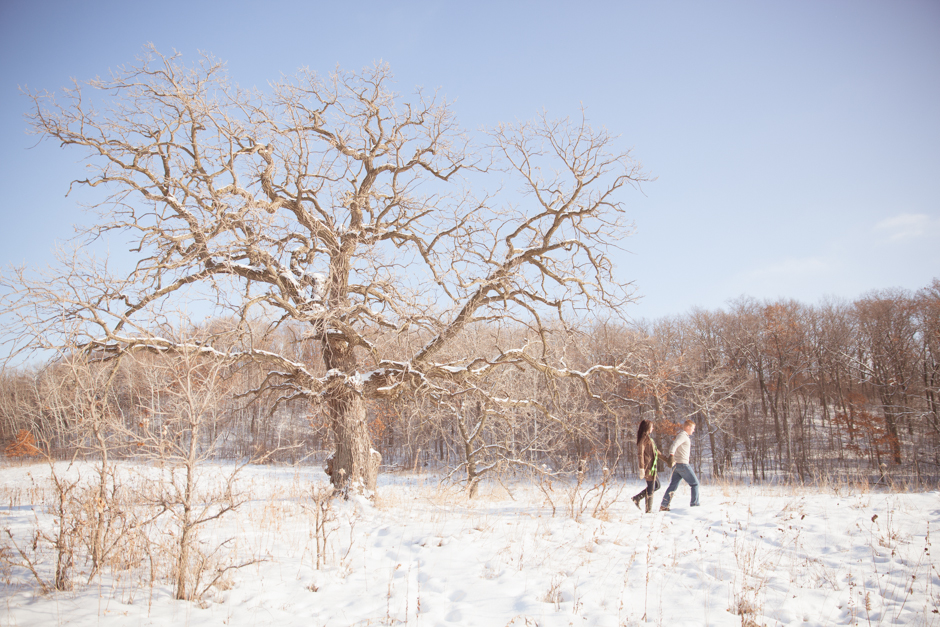 "Emily, Jim, James, Engaged, ""Richardson Nature Center"", Bloomington, Photos, Images, Park, Winter, Snow, Snowy, Grass, ""Tall Grass"", ""Golden Grass"", MN, Minnesota, ""Jessica Hannon Photography"", ""fotofilm studios"", tree"