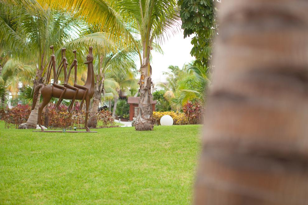 "Husband, Wife, Emma, David, Mexico, ""Playa Mujeres"", Excellence, ""Excellence Playa Mujeres"", Honeymoon, ""Just Married"", Newlyweds, Lovers, Beach, ""Palm Trees"", ""White Sand"", Pool, Water"
